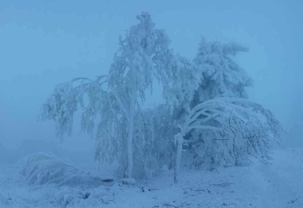 Raueis nahe Winterberg, 6. Dezember 2014
