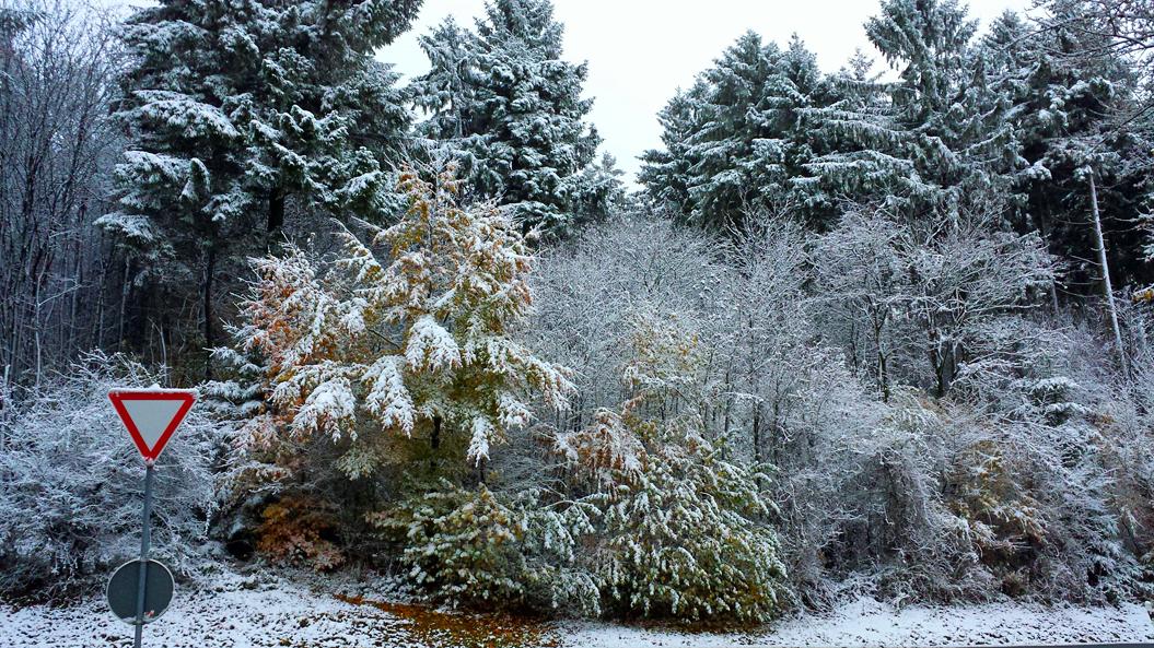 Winter zwischen Veldrom und Kempen, 350 Meter ü. NN