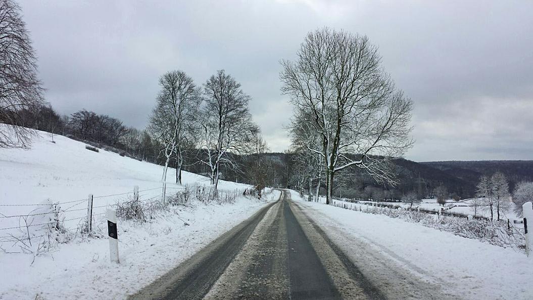 Keine 15 Autominuten von Steinheim entfernt herrschte nahe Bad Driburg bereits tiefer Winter, 13. Januar 2017