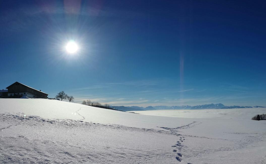 Der schlafende Bodensee unter einem weißen Nebelmeer, Nebelgrenze etwa 700 Meter. Im Hintergrund das Säntismassiv