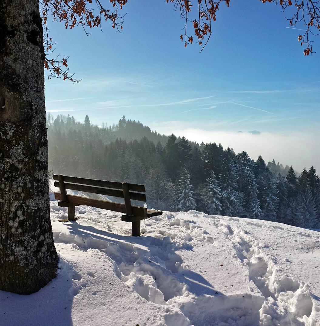 Eine sonnige Bank mit Aussicht auf das Nebelmeer
