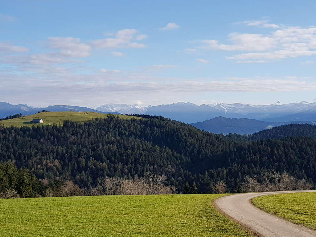 Auf dem Hochberg, Blick in den Bregenzer Wald, 1. November 2017