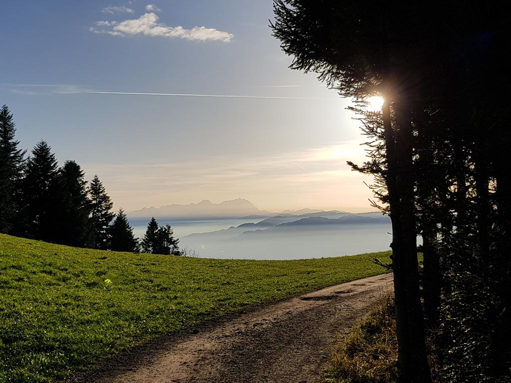 Leichter Dunst im Rheintal, 1. November 2017