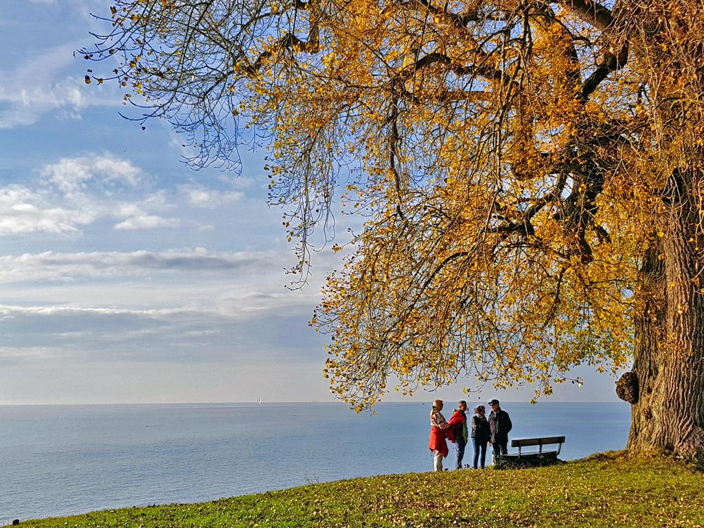 Majestätischer Ausblick vom Ufer auf den See, 4. November 2017