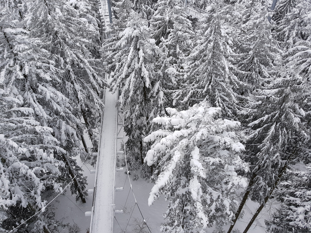 Blick vom Turm am Sky-Walk-Scheidegg, 17. Dezember 2017