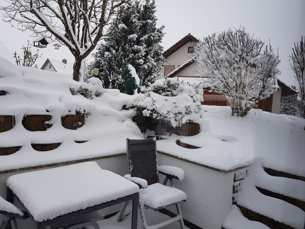 Winterlicher Blick in den Garten, 28. Dezember 2017