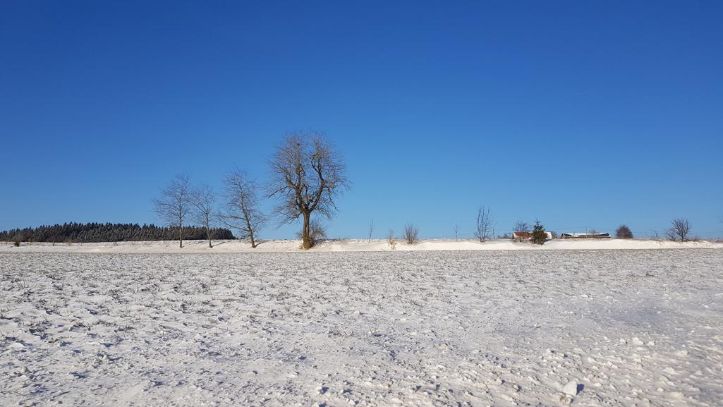 Eisige Kälte aber traumhaftes Blau: 24. Februar 2018