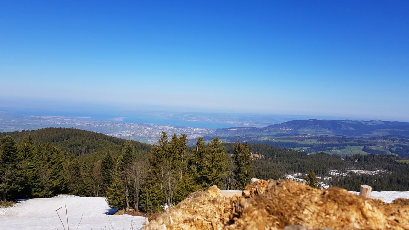 Ausblick zum Rheintal, See und Pfänderrücken kurz vor dem Gipfel, 18. April 2019