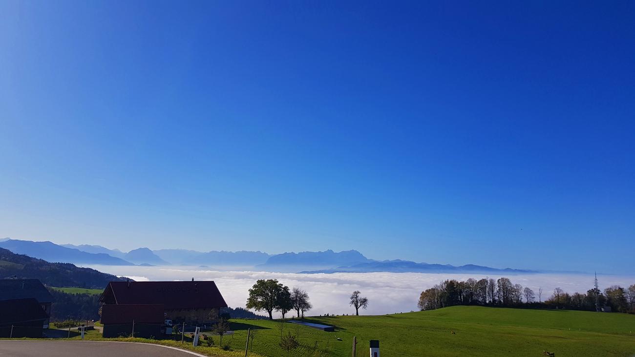 Bei Lutzenreute mit Blick auf das Nebelmeer, 26. Oktober 2019