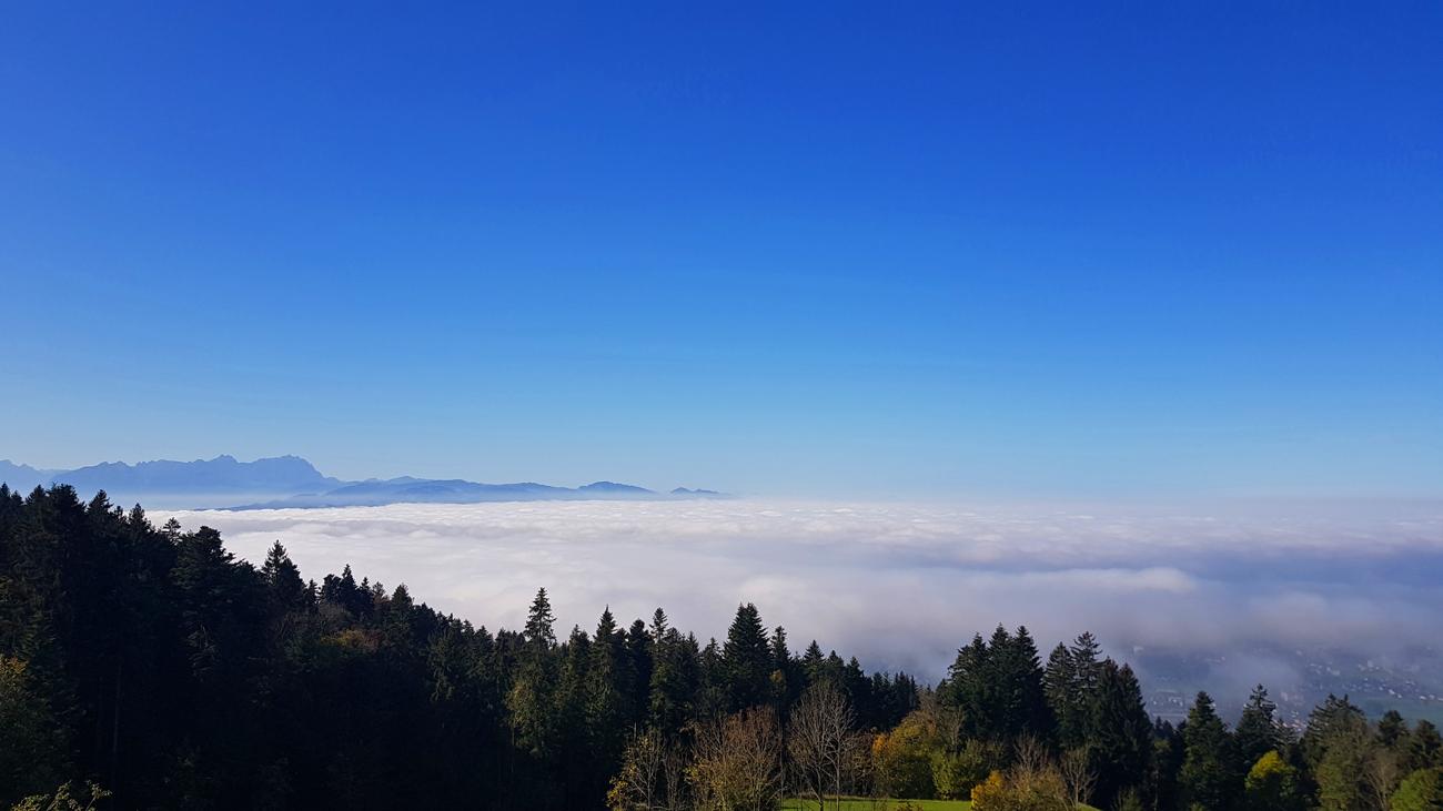Bei Eichenberg mit Blick auf das Nebelmeer, 26. Oktober 2019