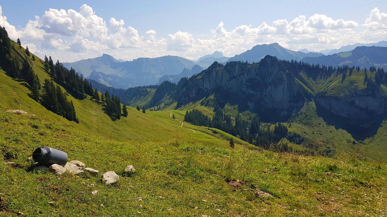 Kurz vor der Lingenaueralpe südlich des Gipfels, 31. August 2019