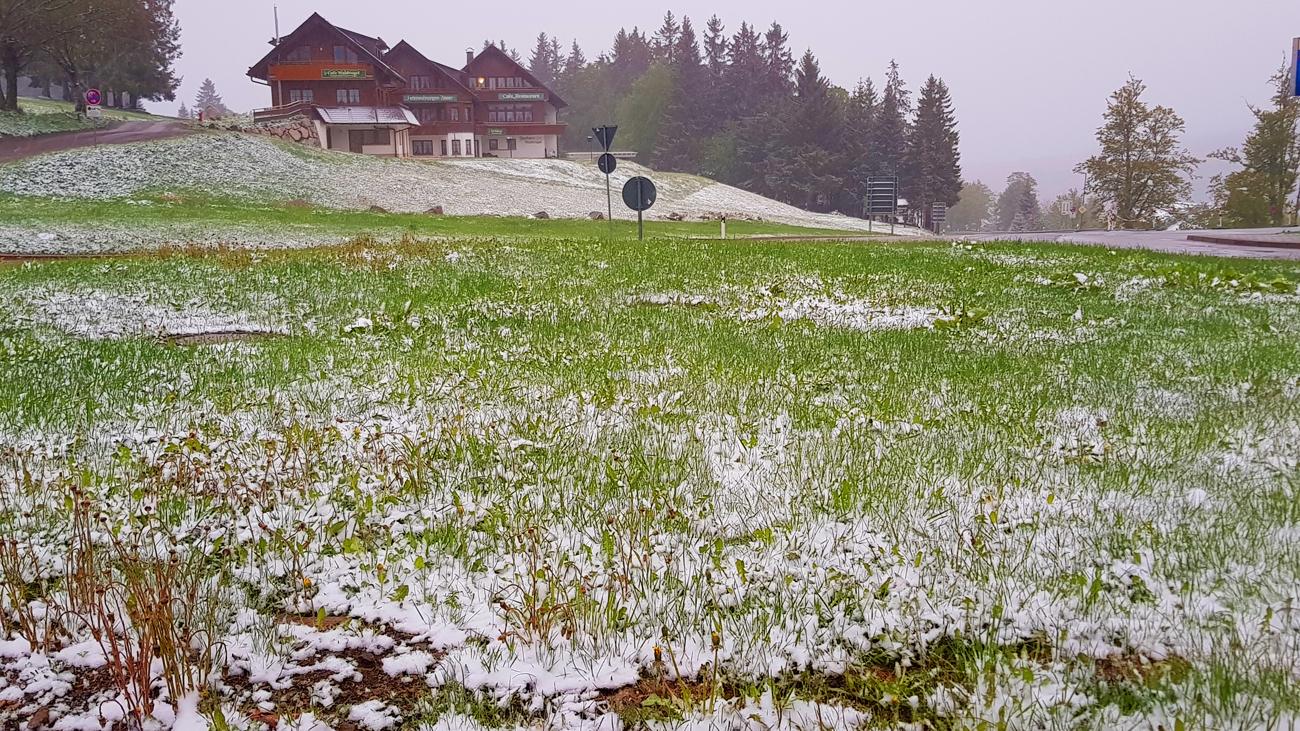 Auf dem Weg zum Feldberg wurde die weiße Decke höher, 11. Mai 2020