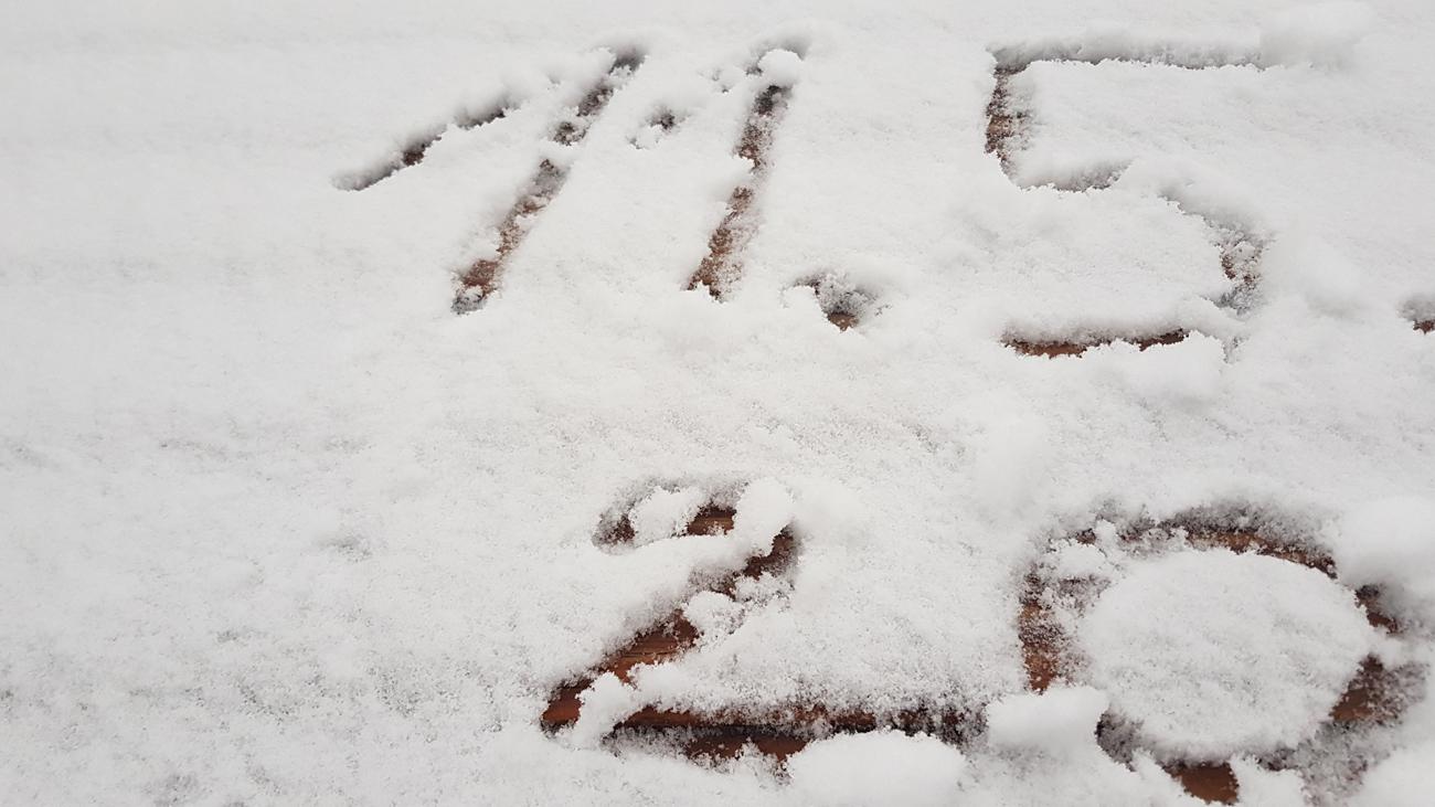 Mai-Schnee, 11. Mai 2020